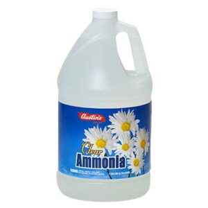 Ammonia for Carpet Cleaning